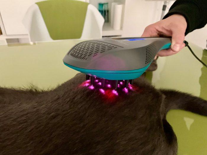 Laserfrequenztherapie